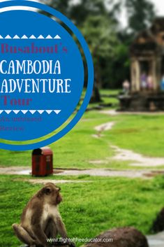 Cambodia is amazing, but if you're worried about going by yourself. take a tour! Adventure Tours, Adventure Travel, Top Travel Destinations, Travel Tips, Travel Ideas, Travel Hacks, Travel Essentials, Budget Travel, Vietnam