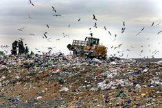 En 2010, en plein milieu de la crise des éboueurs de la ville de Naples, l'administration norvégienne avait proposé à la municipalité italienne d'acheter une grande partie de leurs déchets accumulés lors de cette période (1 400 tonnes d'objets à recycler par jour). Cependant, la transaction n'a jamais été conclue et la Norvège a préféré importer du Royaume-Uni et aimerait bien s'attaquer aux déchets américains.