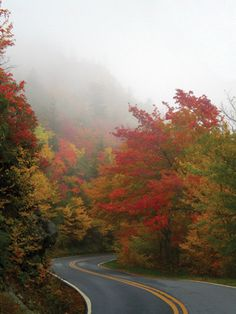 Blowing Rock & Banner Elk  -N.C. Mountain Guide from Charlotte Magazine
