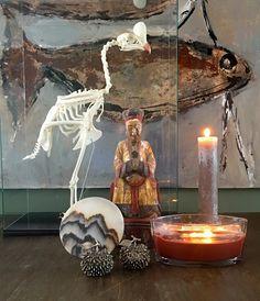 Curasaw skeleton