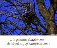 ... a genuine #fundament ~ holds plenty of #ramifications ! ( #Samara )