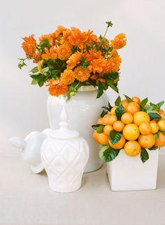 Orange dahlias in white vase.