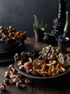 Wild Mushroom Still Life. James Ellerker | Food Photographer | San Francisco Bay Area.