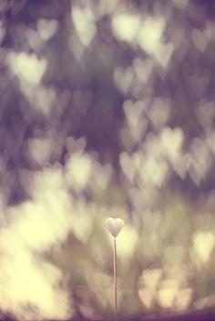 Forever Love♥: DIY