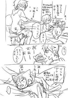 How to calm Rin down so some work can get done ...  From nonta2323 ... Free! - Iwatobi Swim Club, free!, iwatobi, neko, cat, rin matsuoka, rin, matsuoka, makoto tachibana, makoto, tachibana