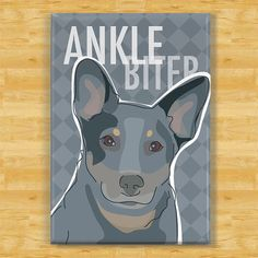 Ankle Biter - Queensland Heeler Australian Cattle dog