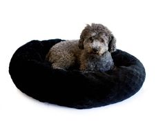 Black PV Fleece Round Cuddler *** Read more at the image link. (This is an affiliate link and I receive a commission for the sales)