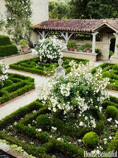 French Garden: In William Christie's 16th-century French countryside estate, the Cloister Garden features the classic rose Katharina Zeimet.