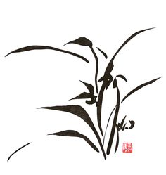 Orchid - sumi ink - Zen Painting - Meditation Art - Chinese brush work