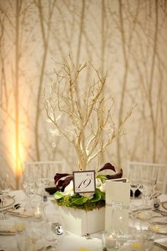Fall Modern Green Silver White Centerpiece Centerpieces Indoor Ceremony Place Settings Wedding Flowers Photos & Pictures - WeddingWire.com