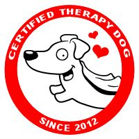 Certified Therapy Dog // Ammo the Dachshund