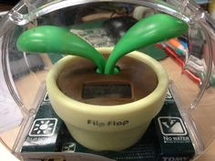 No. 8 搖擺植物,XL 版。