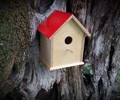 There is nothing like a family of birds moving in and building their nest. Building a bird house will definitely help them and it is also a good opportunity to work with our kids and teach them how to love and protect nature. This was an easy build, not many tools needed and it was a lot of fun.So lets get started to see what we need and how to build this birdhouse.Tools And Materials:Sliding miter saw Router Straight router bit (any size) A few 25mm nails or brad nail gun Hammer Pencil Tape…