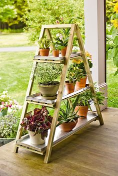 Factory Second A-Frame Plant Stand this looks like it would be pretty simple to build but if you aren't crafty with wood you can buy it