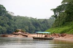 Tambopata River, Peru. Loved being there...