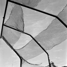 vivian schmitt galerie