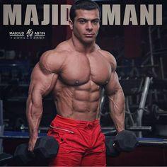 Majid Amani