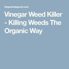 Vinegar Weed Killer - Killing Weeds The Organic Way