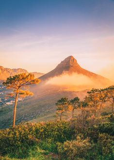 The 12 Best Hikes In South Africa You Have To ExperienceYou can find South africa and more on our website.The 12 Best Hikes In South Africa You Have To Experience Travel Photography Tumblr, Photography Beach, Cape Town Photography, Food Photography, Visit South Africa, Cape Town South Africa, South Africa Safari, East Africa, Wanderlust Travel