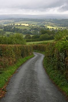 Hedgerows | Narrow roads of Dartmoor National Park Near Moretonhampstead Devon, England