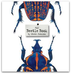 Beetle Book Cover Gallery: New York Times Best Illustrated Children's Books of 2012