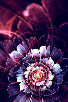 Looking Glass, Flower Fractal, Art Purple Wallpaper, Love Wallpaper, Wallpaper Backgrounds, Animes Wallpapers, Cute Wallpapers, Love Flowers, Beautiful Flowers, Cellphone Wallpaper, Iphone Wallpaper