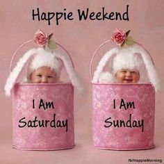 Bon Weekend, Weekend Gif, Happy Weekend Quotes, Friday Weekend, Its Friday Quotes, Sunday Quotes, Good Morning Rose Images, Good Morning Happy Saturday, Morning Morning