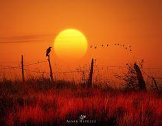 Photography by Alvar Astúlez