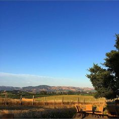 No Monday blues here! Unless you count the sky of course!! Photo credit:  @augiechang #lovely #views #napavalley #carnerosinn #mondays #blueskies #happyplace #wanderlust #daydream #vacation #travel #visitnapavalley #mountains #vineyards #carneros #napa #goodvi