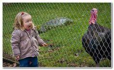 Baby girl funny http://ift.tt/2gTB8Lg