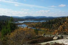 Fyresdal, Norway. www.inatur.no/fiske/50f6adc7e4b07f86c6025666/fiske-i-fyresdal-gode-fiskeomrade-god-plass | Inatur.no
