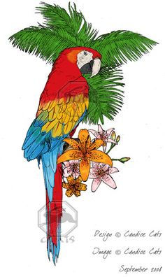 parrot tattoos for women | Colorful Parrot Tattoo Design For Men And Women Tattoos