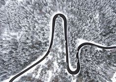 Winter, tree, forest, curvy road, aerial view wallpaper