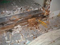 Drywall Repairs Raspberry Lane Apts Water Damaged Walls Floor - Bathroom water damage repair