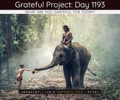 Today I'm grateful for trust  I don't trust words, I trust actions.  Share #gratefulproject #tgday1193 if you agree Grab a FREE black, white, or blue bracelet at http://GratefulProject.org/ #rbas #gratefulprojectday #tgpday1193 #trust #honor #trusting