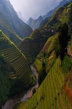 Terraced river valley in Bhutan (Himalayas).  Photographer unknown.