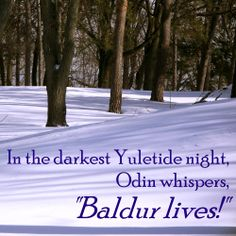 ARTICLE: The Winter Solstice Story (Baldur lives!) * Conversations with Chickadees
