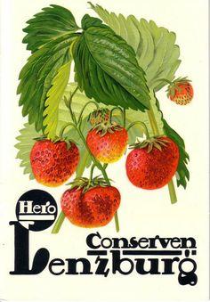 Lenzburg Suisse... ♥ ❤ ❥ ❣ ❦ ❧ Swiss Design, My Heritage, Vintage Posters, Switzerland, Plant Leaves, Advertising, Hero, Celestial, Roads
