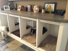 dog crates under counter under clothes side