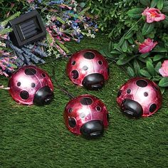 Solar Ladybugs, Item #46962   $17.99. These Four Charming Solar Ladybugs  Illuminate Automatically At Night To Light Up Your Walkway Or Garden.