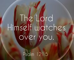 minute                                                                                                                                     Psalm 121:5