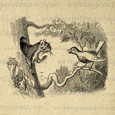 Printable Digital Squirrel and Bird by VintageRetroAntique on Etsy