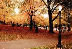 Park in Autumn. Seasons for Growth Program