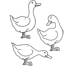 coloriage   canard   coloriage-canard-8