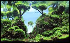 vodoc-xeno: By www.aqmagic.com