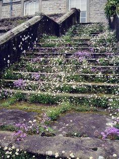 KELLY-WEARSTLER_MY-VIBE-MY-LIFE_FLOWER-62.jpg 400×534 pixels