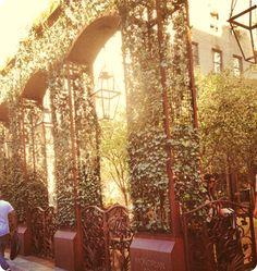 Mondrian hotel // Soho NYC