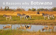 6 reasons why Botswana is a unique travel destination by Sabine | Jan 15, 2016 | Botswana | 42 comments