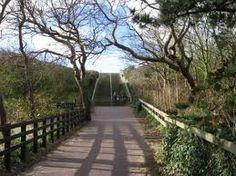 natuurpark westenschouwen , bij Brug Haamstede-