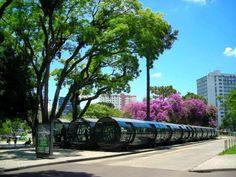 Movimento Eu Curto Curitiba